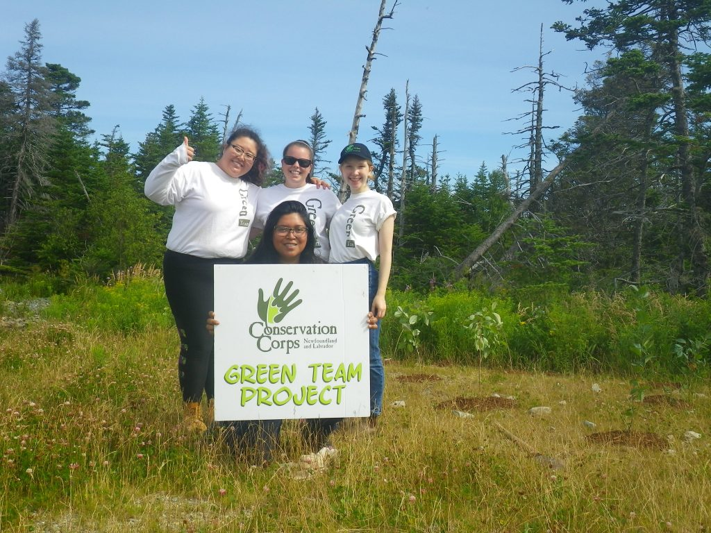 Conservation Corps Green Teams helping plant trees to increase vegetative cover