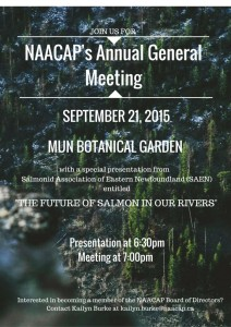 NAACAP's Annual General Meeting (compressed)
